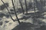 Biancuzzi - Ilargi - Tirage argentique et techniques mixtes