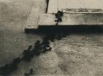 Biancuzzi - Arcane sans nom - cyanotype viré